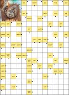 """Онлайн сканворд """"Орангутан"""""""
